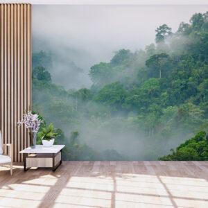 fototapet-misty-forest