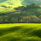 Fototapet_Green_Field